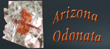 Arizona Odes